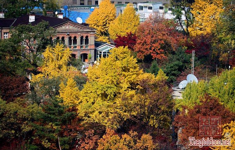 Seoul (16).jpg