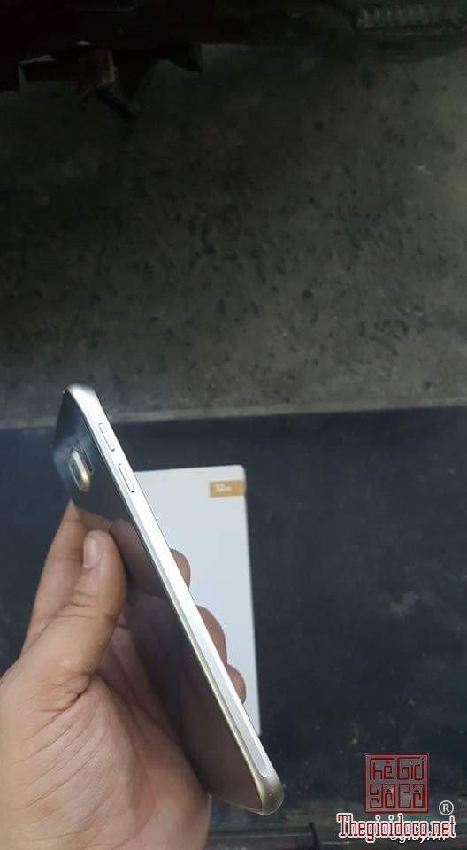 S6 gold (4).jpg