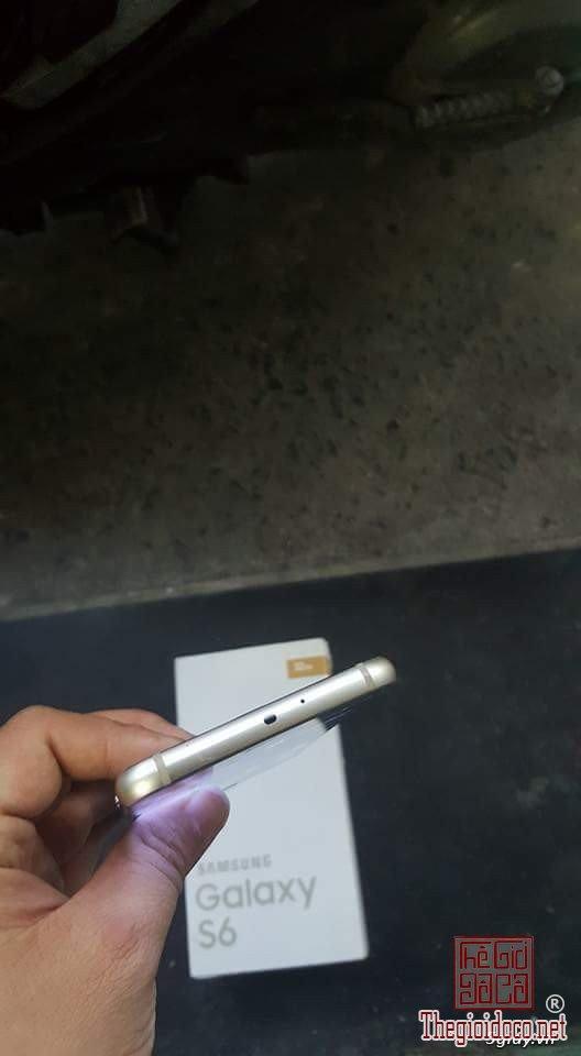 S6 gold (5).jpg