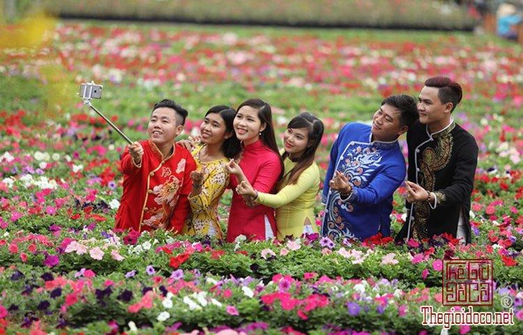 Làng hoa Nhật Tân, Hà Giang, Mộc Châu, Làng Nhật Tân, Hưng Yên, Sa Đéc (17).jpg