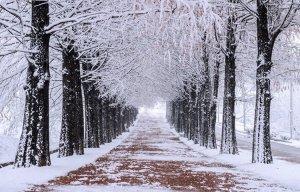 Đắm mình trong cảnh đẹp mùa đông xứ Hàn Quốc