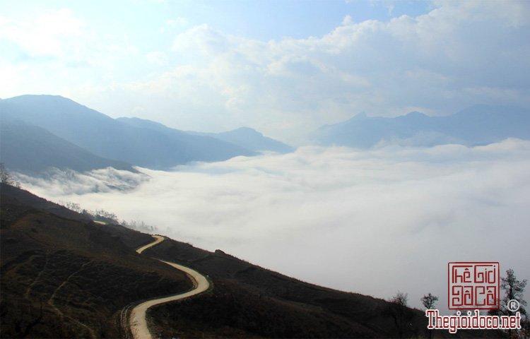 Săn mây (3).jpg