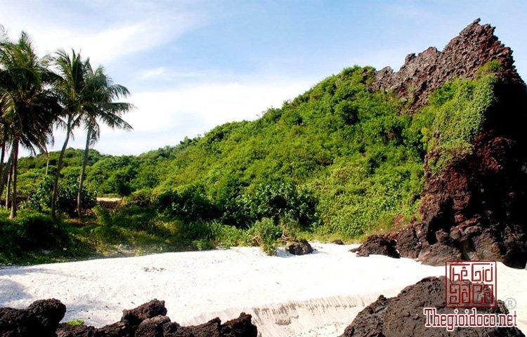 đảo Bé Lý Sơn (9).jpg