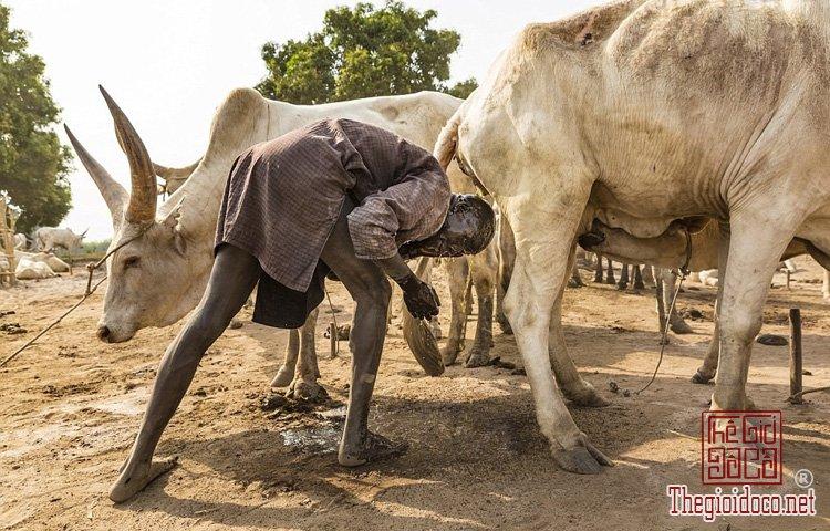 tộc Mundari ở Nam Sudan (1).jpg