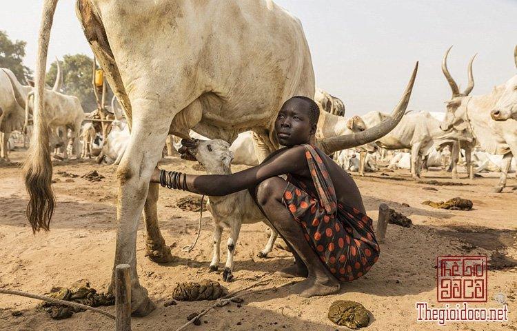 tộc Mundari ở Nam Sudan (6).jpg