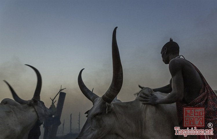 tộc Mundari ở Nam Sudan (8).jpg