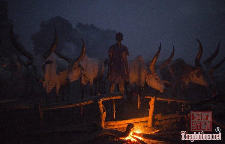 tộc Mundari ở Nam Sudan (11).jpg