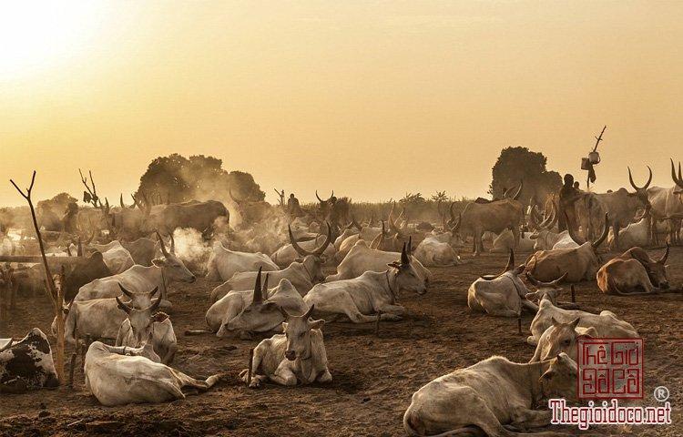 tộc Mundari ở Nam Sudan (14).jpg