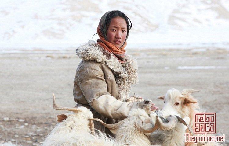 Người Chang Tang-Pa (4).jpg