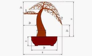 30 nguyên tắc abc cho người mới học làm cây