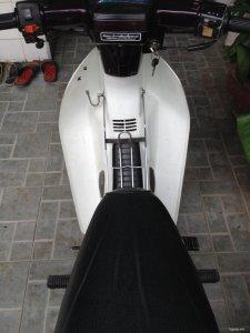 Cần bán Honda Dream Thái 100cc màu nho BSTP đời 2006 chính chủ
