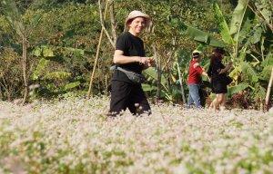 Du lịch Ninh Bình (7).jpg