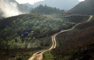 Mộc Châu , cao nguyên Mộc Châu,Sơn La,Tây Bắc, Ở thung lũng mận Nà Ka,Tân Lập,  (1).jpg