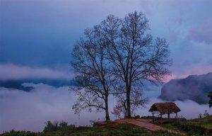 Du lịch Y Tý  -  Săn mây giữa biển mây trắng bồng bềnh tại Y Tý