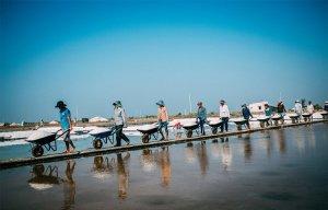 Cánh đồng muối Bà Rịa - Vũng Tàu tuyệt đẹp trong những ngày nắng