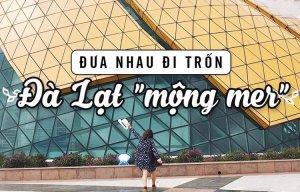 Hà Nội – Đà Lạt tại sao không, chuyến du lịch Đà Lạt của bạn trẻ 9x