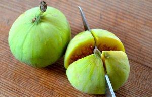Quả Sung là một loại quả có rất nhiều công dụng nhưng được trồng rất rộng rãi