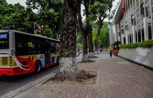 Những vỉa hè cực đẹp ở Hà Nội – Du lịch Hà Nội