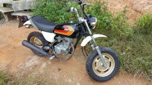 Honda Ape 50 date 2005
