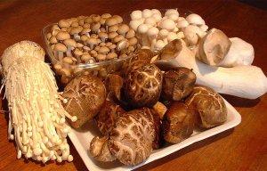 Công dụng chữa bệnh của nấm và tác dụng của nó với sức khỏe
