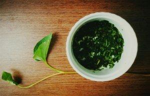 Chữa trĩ với rau diếp cá – Công dụng chữa bệnh của rau diếp cá