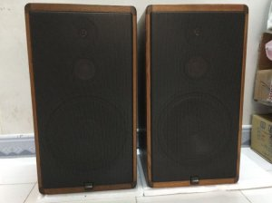 Loa Canton CT-1000 Made in Germany