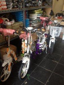 xe đạp điện mới 100% giá cho học sinh