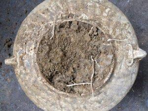 Đồ đào lên từ long đất