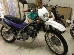 Cào cào Kawasaki 250 cc siêu ngon giá bèo luôn