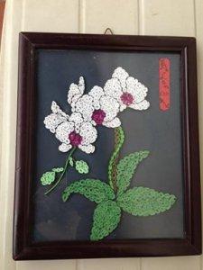 Tranh hoa lan giấy cuộn
