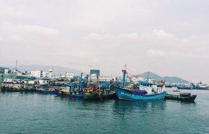 Hanh-trinh-kham-pha-Quy-Nhon-xanh-ngat-xanh-vao-dip-le (22).jpg