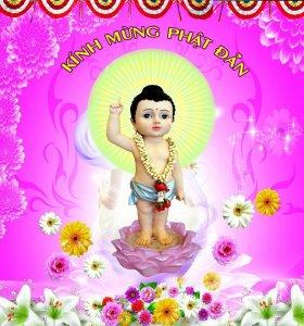 Để mừng ngày lễ phật đản! Ace nhanh tay thỉnh cho mình một pho tượng Phật mang lại bình an...và may