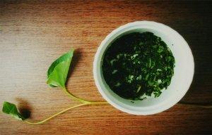 Công dụng chữa bệnh của rau diếp cá – Rau diếp cá chữa bệnh trĩ