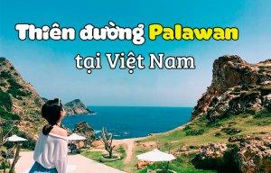 Tại sao lại nói Kỳ Co là thiên đường Palawan ở Việt Nam nhỉ