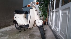Suzuki gemma 50cc hqcn 2 thì hàng hiếm thanh lí ve chai