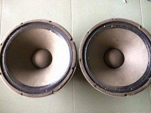 Cặp loa EV bass 40 cm