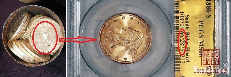 Vo-tinh-phat-hien-kho-bao-den-10-trieu-USD-(212-ty)-khi-dat-cho-di-dao (12).jpg