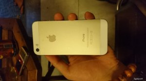 Bán Iphone 5s Gold 16GB