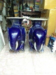 Cặp voi tím Cây Mai