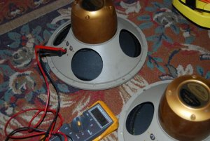 Tannoy Monitor Gold 12 inch