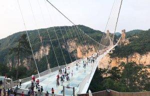 Phuong-Hoang-Co-Tran (7).jpg