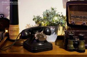 Điện thoại sừng hươu