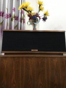 Loa Klipsch Horn - Đôi Loa Vượt Thời Gian
