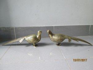 Cặp chim trỉ bằng đồng