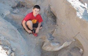 Vô tình vấp ngã cậu bé Jude Sparks tìm được kho báu hóa thạch 1,2 triệu năm tuổi ở New Mexico