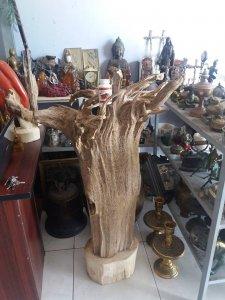 Trầm hương khổng lồ quý hiếm nặng gần 30kg
