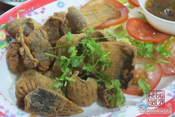 lau-ca-duoi-mon-ngon-vung-tau (4).jpg