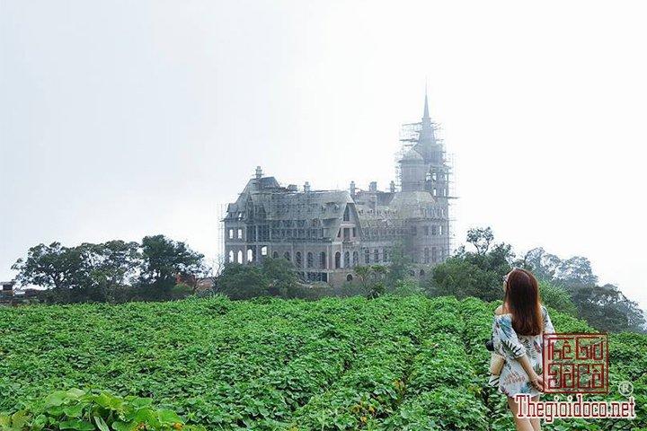 Review-Tam-Dao-Huong-dan-chi-tiet-di-Tam-Đao-voi-gia-re-nhat-cho-cac-ban (16).jpg