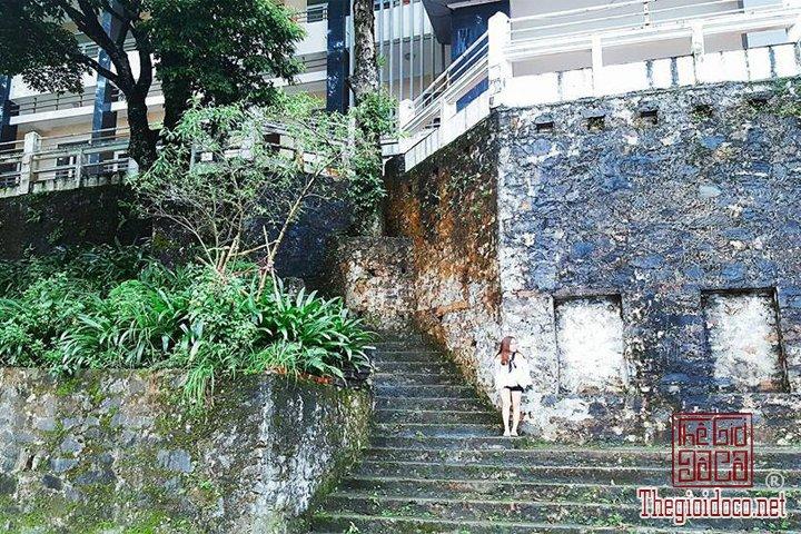 Review-Tam-Dao-Huong-dan-chi-tiet-di-Tam-Đao-voi-gia-re-nhat-cho-cac-ban (17).jpg
