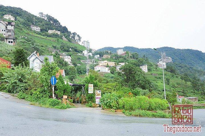 Review-Tam-Dao-Huong-dan-chi-tiet-di-Tam-Đao-voi-gia-re-nhat-cho-cac-ban (20).jpg